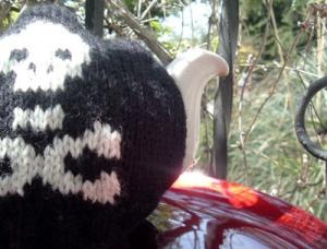 skull cosy 2