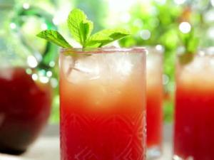 QF0311H_watermelon-mint-iced-tea-greek-inspired-recipe_s4x3.jpg.rend.sni12col.landscape
